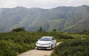 common problems with toyota corolla